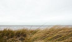 Kolmapäeval (22.10.) katab Eestit kõrgrõhkkonna lõunapoolne serv. Puhub tugev ida- ja kagutuul, põhjarannikul ka kirdetuul, puhanguid on sisemaal 12-13 m/s, saartel ja rannikul 15-18 m/s.