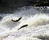 Eelmisel aastal valmis jõgede paisudel 27 uut kalapääsu. Tänu sellele saavad kalad vabalt...