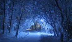 'Laupäeval (24.01.) on kõrgrõhuala mõjusam, kuid üksikutes kohtades võib veidi lund sadada. Puhub on öösel nõrk, päeval muutub saartel ja looderannikul lõuna- ja edelatuul tuntavamaks. Õhutemperatuur on öösel -2..-7°C, päeval on -1..-5, Saaremaa ja Hiiumaa rannikul 0°C lähedal.