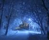 'Laupäeval (24.01.) on kõrgrõhuala mõjusam, kuid üksikutes kohtades võib veidi lund sadada....