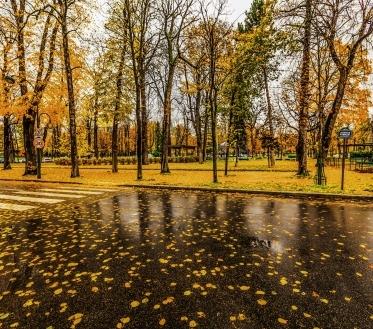 Teisipäeval (29.09.) muutub kõrgrõhkkond mõjusamaks, seda nii maapinna lähedal kui ka kõrgemates õhukihtides. Ilm on suuremal osal Eestist sajuta (üksikuis paigus saju tõenäosus 25-50%).