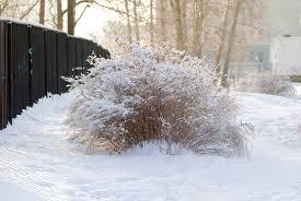 Talvine õhkkond hakkab tänasest alates vähehaaval taastuma, korralikumaid külmapäevi on oodata järgmisel nädalal.