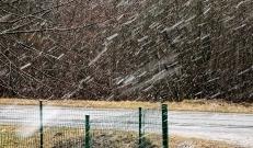 Sünoptik Taimi Paljaku sõnul on aprill tuntud muutlike ilmade poolest ning lörts pole erakordne olnud ka 1. mail.