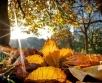 Ilmateenistuse nädalaprognoosi kohaselt on alanud nädala ilm valdavalt sajuta ja nädala...