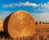 Esmaspäeval (28.08.) on ülekaalus kõrgrõhkkonna mõju ning ilm on laialdasema sajuta ja...