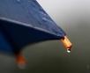 Päeval on sadu tihedam ja sajab paljudes kohtades. Puhub kirde- ja põhjatuul 2-8,...