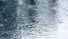 Järgnevate päevade ilmaprognoos lubab kohatisi vihmahooge ning äikesevõimalust. Reedel (24.08) saame rõõmustada taaskord sellele suvele omase soojuse üle. Päevane temperatuur võib kohati tõusta 27 °C- ni.