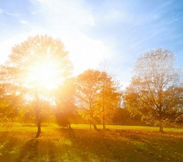Käesolev nädal toob jätkuvalt sooje päevatemperatuure ning varasügisele kohaselt ka üksikuid vihmahooge. Nautigem kaunist septembri algust.