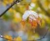 Ilma ülevaade 28.11.18 – 4.12.2018. Peatse talvekuu saabumine annab endast  valide tuultega...