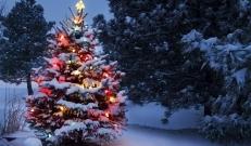 Ilma ülevaade 16.12.18 – 20.12.2018. Ilmaprognoos lubab jõulusemat ilma, pakkudes igasse päeva kerget lumesadu.