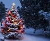 Ilma ülevaade 16.12.18 – 20.12.2018. Ilmaprognoos lubab jõulusemat ilma, pakkudes igasse...