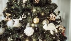 Mis teeb jõuludest tõelised jõulud? Kas külluslikult kaetud jõululaud, pähe õpitud luuletused, mitmevärvilised kingipakid või hoopis midagi muud?