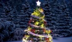 Ilma ülevaade 22.12.18 – 28.12.2018. Esmaspäev, jõululaupäev (24.12) jätkub tõenäoliselt ilusa talvise ilmaga. Ilusaid pühi!