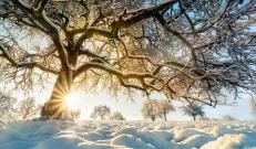 Ilma ülevaade 22.01.19 – 28.01.2019. Teisipäeva öö toob sisemaal isegi kuni -23°C külma ent edaspidiselt külmataat leebub ning päevatemperatuurid jäävad kuni -8 °C-ni.