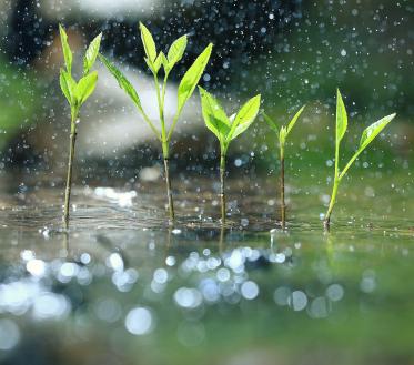 Ilma ülevaade 29.04-03.05.2019 Otsi välja vihmavari! Maikuu saabub koos madalrõhkkonna ja sademetega.