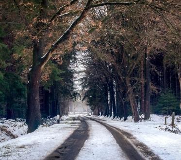 Teisipäeval (5.11) liigub Läänemere lõunarannikult madalrõhkkond Läti kohale ja selle sajupilvedest sajab Lõuna-Eestis tihedat vihma, põhja pool lörtsi, Kirde-Eestis võib ka jäävihma tulla, õhtul läheb sadu üle lumeks.