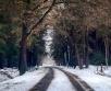 Teisipäeval (5.11) liigub Läänemere lõunarannikult madalrõhkkond Läti kohale ja selle...