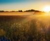 Ilma ülevaade 16.07– 22.07.07.2020. Neljapäeval (16.07) püsib Eesti kohal kõrgrõhuvöönd....