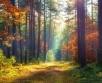 Ilma ülevaade 2.10 – 8.10.2020. Reedel (2.10) katab Venemaa kõrgrõhkkonna serv Euroopa...