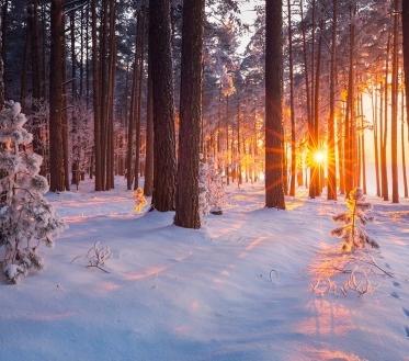 Ilma ülevaade 15.01.21 – 19.01.2021. Reedel (15.01) koondub kõrgrõhkkond Skandinaavia kohale ja selle serv laieneb Eestini. Suuremat sadu ei tule, aga kohatiste nõrkade lumehoogude võimalus püsib. Tuul jääb nõrgemaks ning puhub valdavalt kirdest, õhtul pöördub põhjakaarde. Õhutemperatuur langeb hommikuks lääne pool -8..-13..