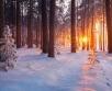 Ilma ülevaade 15.01.21 – 19.01.2021. Reedel (15.01) koondub kõrgrõhkkond Skandinaavia kohale...